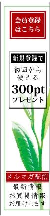 新規登録300ポイントプレゼント