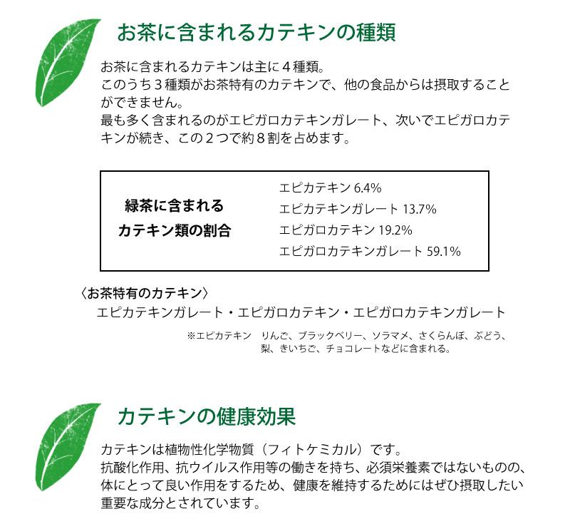 カテキンの種類と健康効果