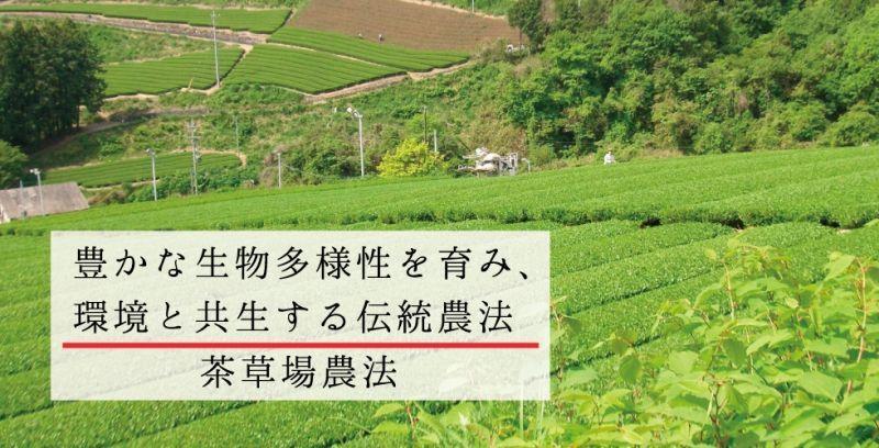 豊かな生物多様性を育み、環境と共生する伝統農法「茶草場農法」ページトップ画像